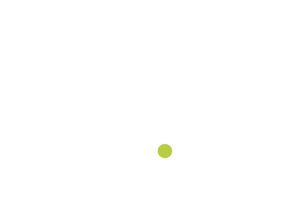 NaturalDomus official logo